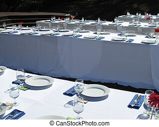 Outdoor Dinner Party - Banquet tables set for outdoor garden...