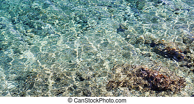 Transparent water - 2:1 background of sea water with stones...