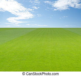 Green field under blue sky with clouds