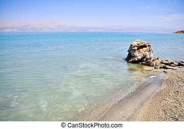 Crystalic salt on the beach of the Dead Sea,
