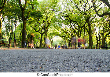 The Mall, Central Park, New York - People walking and...