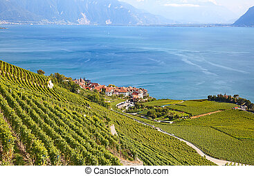 Lavaux region - Vineyards of the Lavaux region over lake...