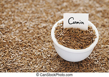 Cumin - Dried cumin in a white ceramic bowl