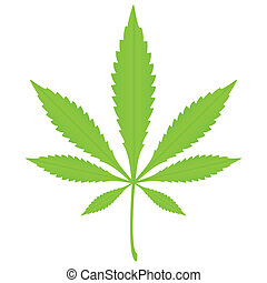 marijuana leaf - Green marijuana leaf on a white background...