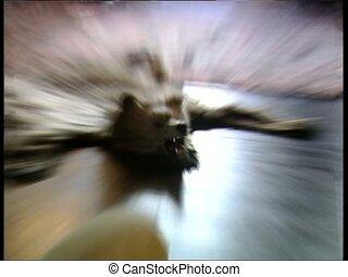 DRACULA CASTLE bearskin zoom - Bearskin filmed in the Count...