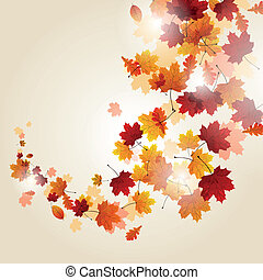 Vector Autumn Leaves - Vector Illustration of Autumn Leaves
