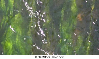 abstract river water stream