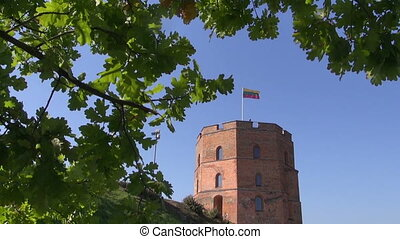 Vilnius historical Gediminas castle tower with flag and oak