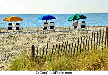 Beach chairs and umbrellas set up along the shore