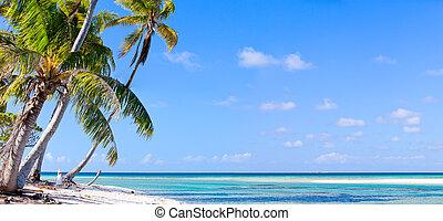 isola, francese, Polynesia