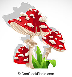 Red fresh Mushroom amanita in grass