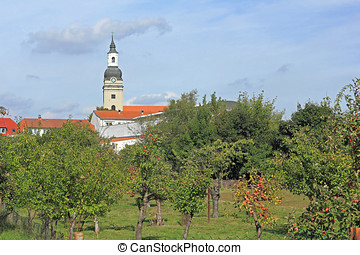 Apple orchard and St Trinity church in Genthin, Germany -...