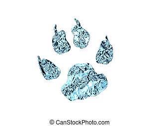 Watersplash animal footprint