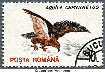 ROMANIA - 1993: shows Golden Eagle (Aquila chrysaetos) -...