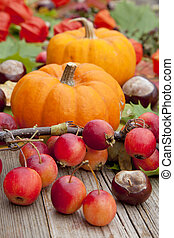 Pumpkins on colorful autumn - Two Pumpkins on colorful...