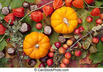 Two Pumpkins - Pumpkins on colorful autumn