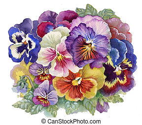 Viola Tricolor: watercolor flower, bouquet flower,...