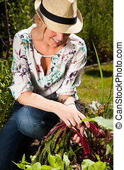 Working in the garden - Pretty young woman working in the...