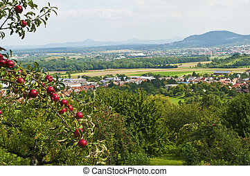 Panoramic view in Baden-Wuerttemberg,Germany