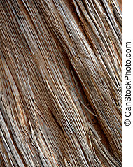Old Weathered Wood - Detailed closeup of old weathered wood...