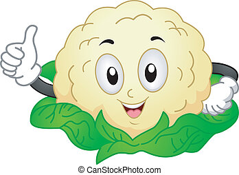 Cauliflower Mascot - Mascot Illustration of a Cauliflower...