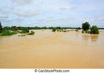 flood water in agriculture area