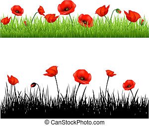 Border With Grass And Poppy, Vector Illustration