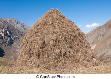 Haymaking in the mountains - A stack of fresh hay in the...