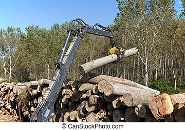 Wood exploiting - Crane with jaws loading logs onto a stack