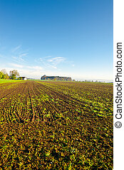 Plowed Fields - The Swiss Farmhouse Surrounded by Plowed...