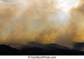 High Park Fire Burn Colorado Mountains - Wildfire Burns the...
