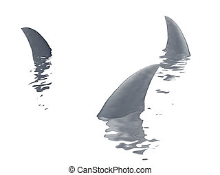 three sharks fin  on a white background