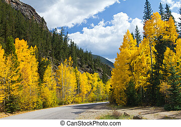 Scenic Road in Colorado Fall Aspens - Road in Colorado Fall...
