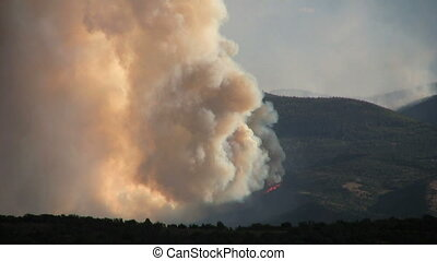 Mountain forest Fire