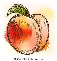 桃, 水彩画, 絵