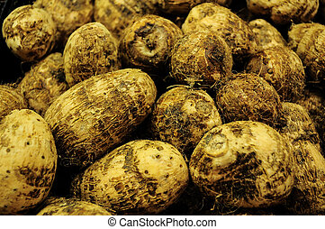 group of taro root