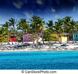 Beautiful beach of caribbean island with brilliant red, pink...