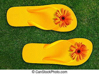 Colorful Flip Flops on green grass, summer back.