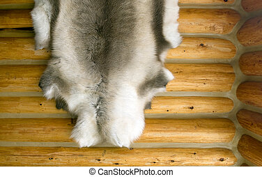 Caribou Pelt Hanging on Log Wall