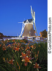 Flowers in front of windmill
