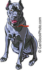 vector sketch black Cane Corso smiling, Italian breed of dog...