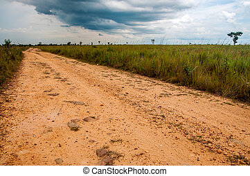 A Dirt Road in the Plains - A dirt road built by FARC rebels...