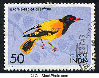 Black-headed oriole - INDIA - CIRCA 1975: stamp printed by...