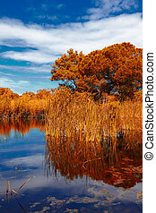 Autumn landscape at Prokopos Lagoon in Greece