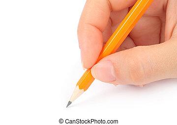 kvinna, hand, blyertspenna, vit, bakgrund