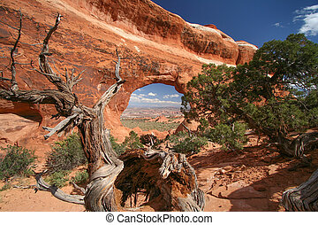 Partition Arch at the Arches National Park