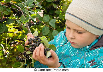 A boy with a sprig of Aronia