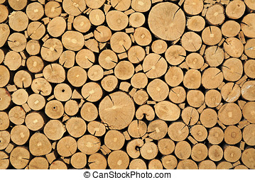 Texture of cut timber logs - Abstract background of a stack...
