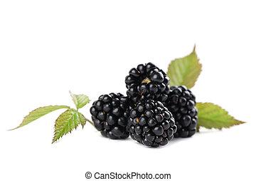 Blackberries - Fresh organic blackberries isolated on white...