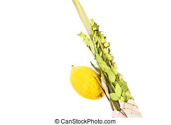 Sukkot holiday - Objects used for this holiday are a lulav...